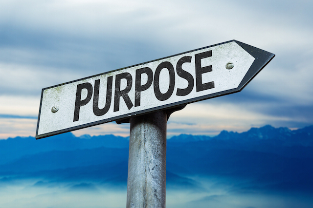 Employee Motivation: Creating Purpose | Incentive & Motivation